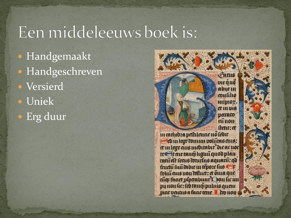Een middeleeuws boek is: