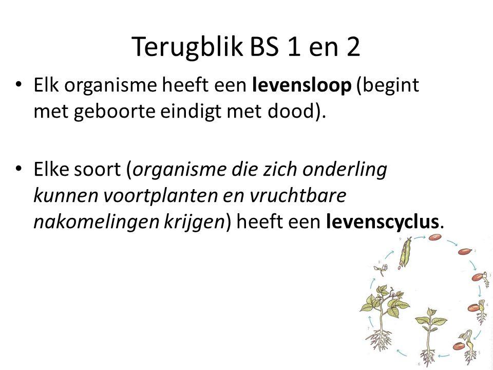 Terugblik BS 1 en 2 Elk organisme heeft een levensloop (begint met geboorte eindigt met dood).
