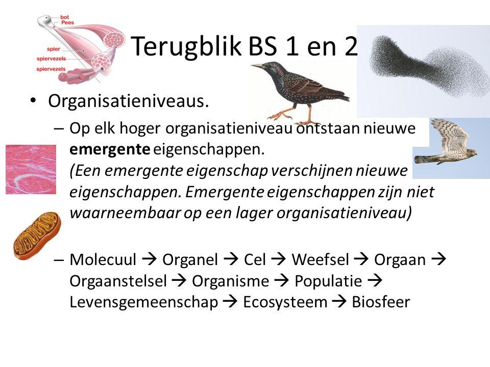 Terugblik BS 1 en 2 Organisatieniveaus.