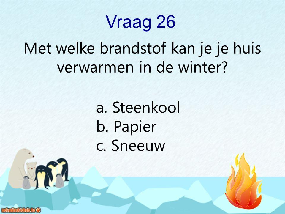 Met welke brandstof kan je je huis verwarmen in de winter