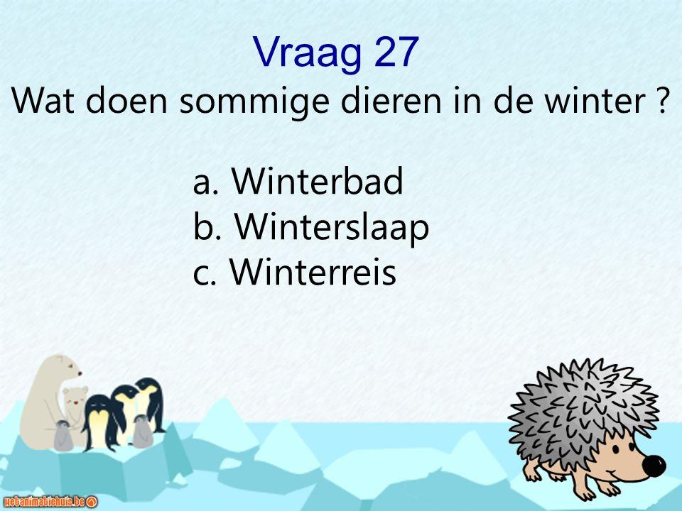 Wat doen sommige dieren in de winter