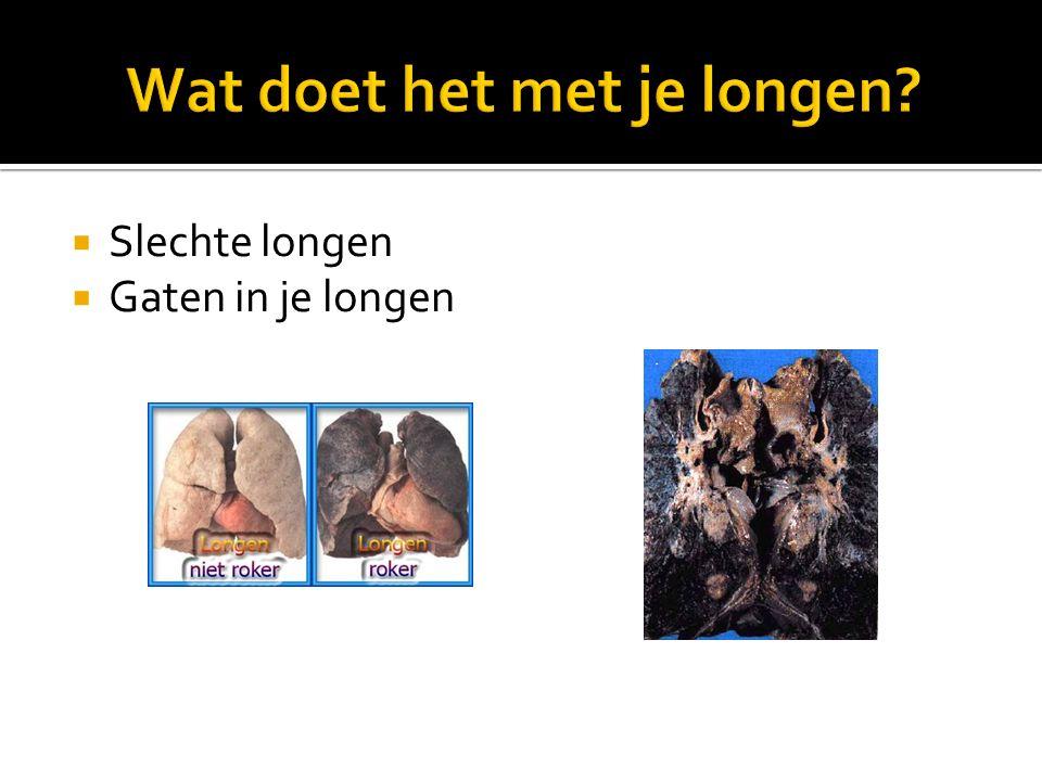 Wat doet het met je longen