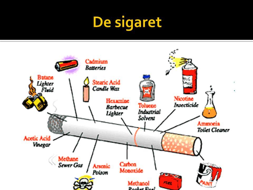 De sigaret Hoe word het gemaakt Video