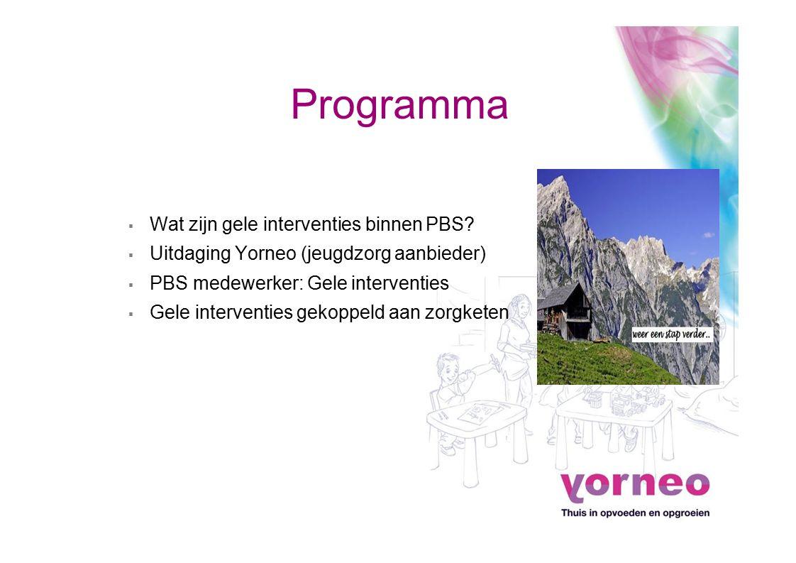 Programma Wat zijn gele interventies binnen PBS