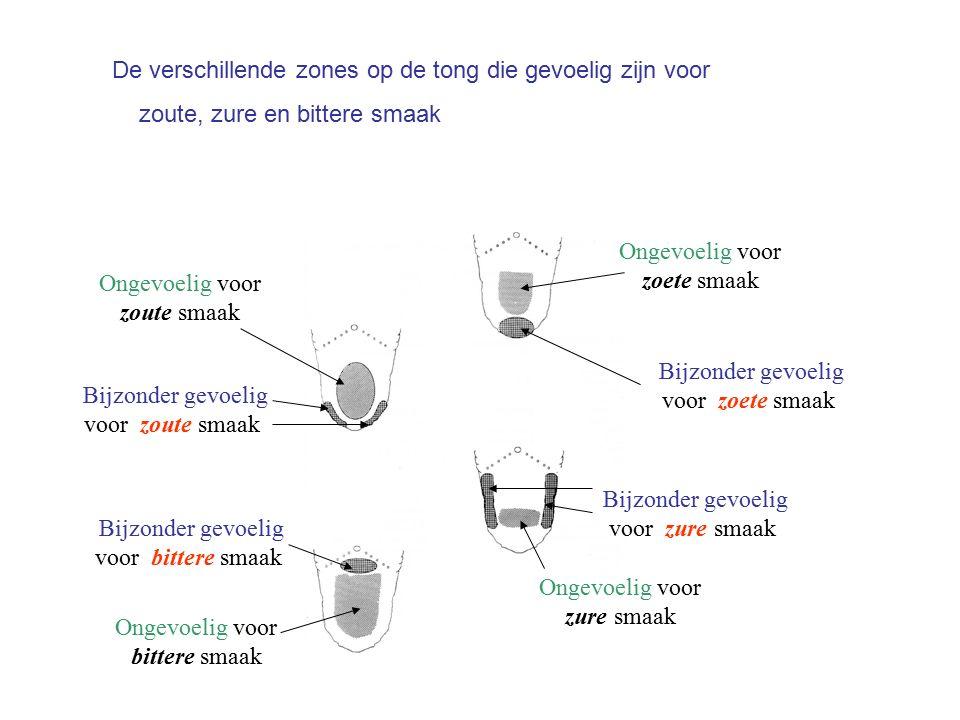 De verschillende zones op de tong die gevoelig zijn voor