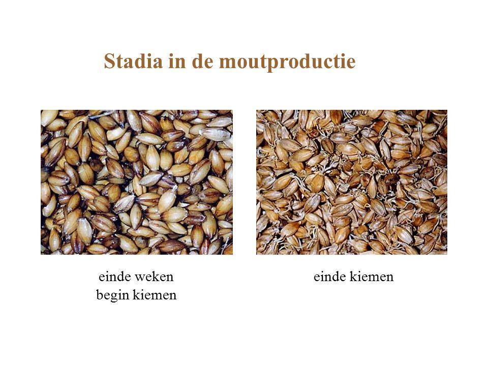 Stadia in de moutproductie