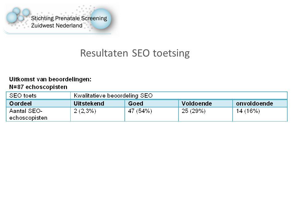 Resultaten SEO toetsing