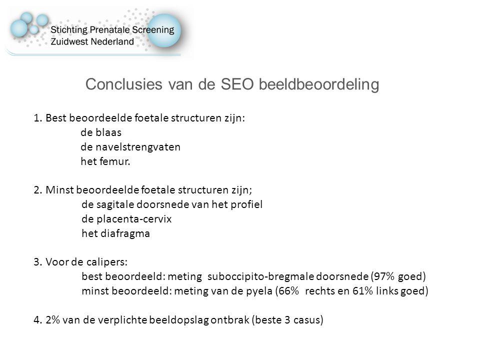 Conclusies van de SEO beeldbeoordeling