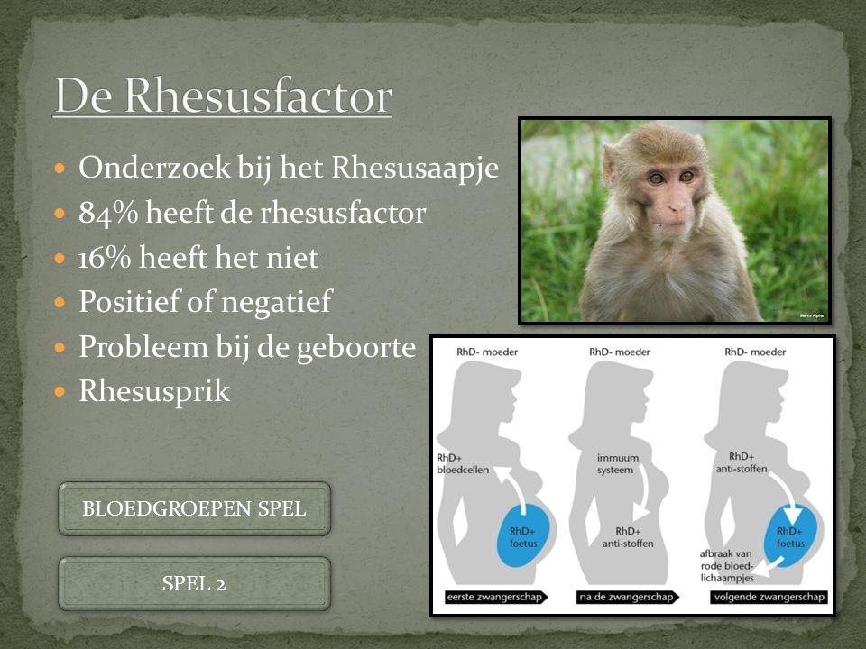 De Rhesusfactor Onderzoek bij het Rhesusaapje