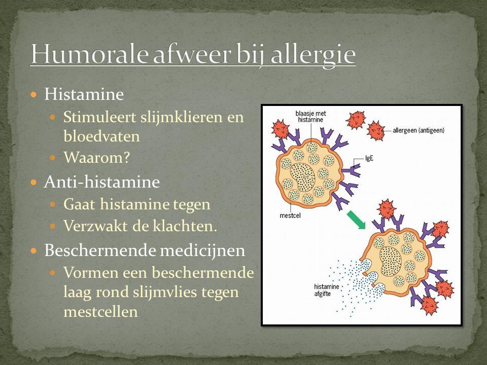 Humorale afweer bij allergie