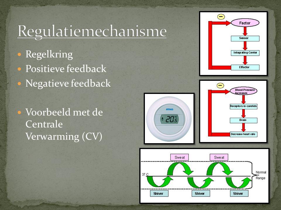 Regulatiemechanisme Regelkring Positieve feedback Negatieve feedback
