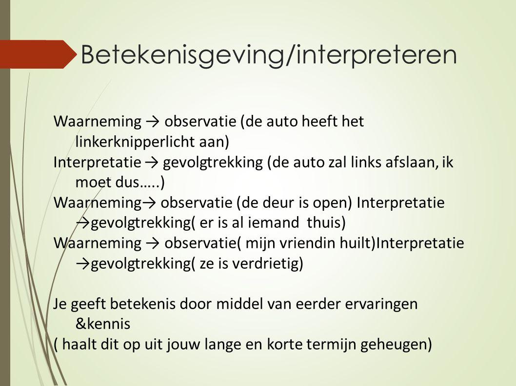Betekenisgeving/interpreteren