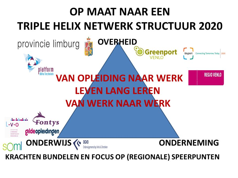 TRIPLE HELIX NETWERK STRUCTUUR 2020