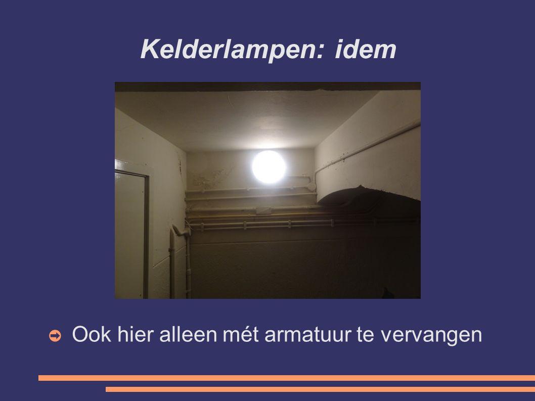 Kelderlampen: idem Ook hier alleen mét armatuur te vervangen