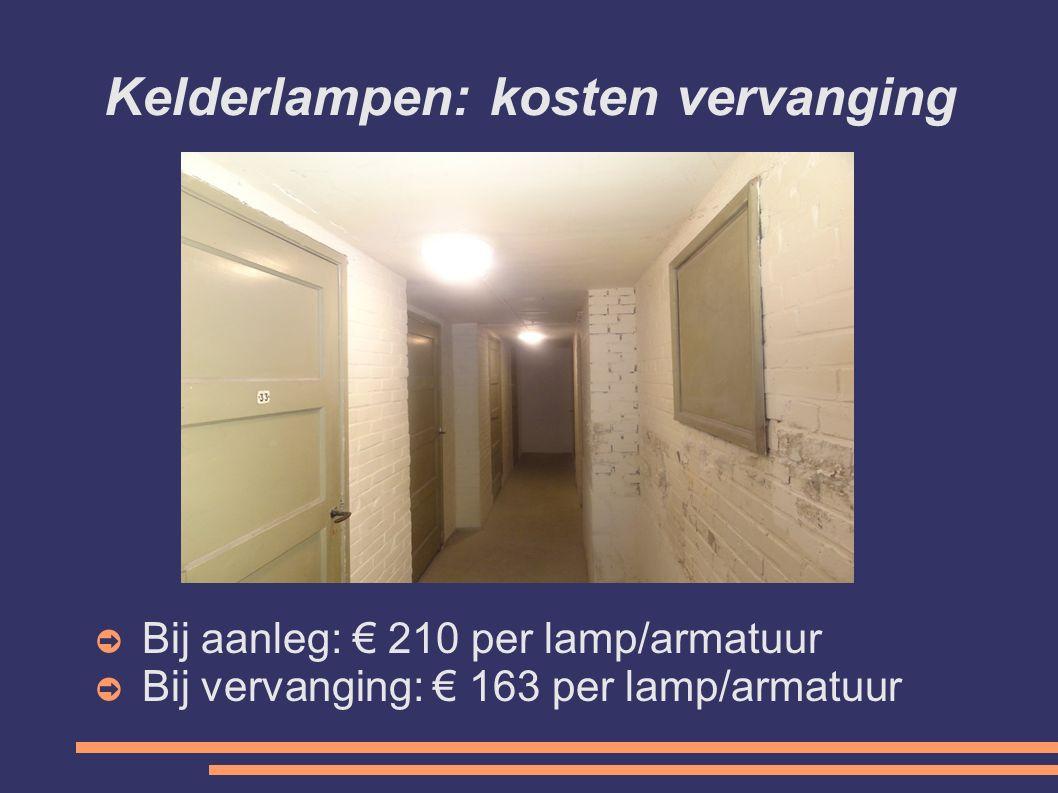 Kelderlampen: kosten vervanging