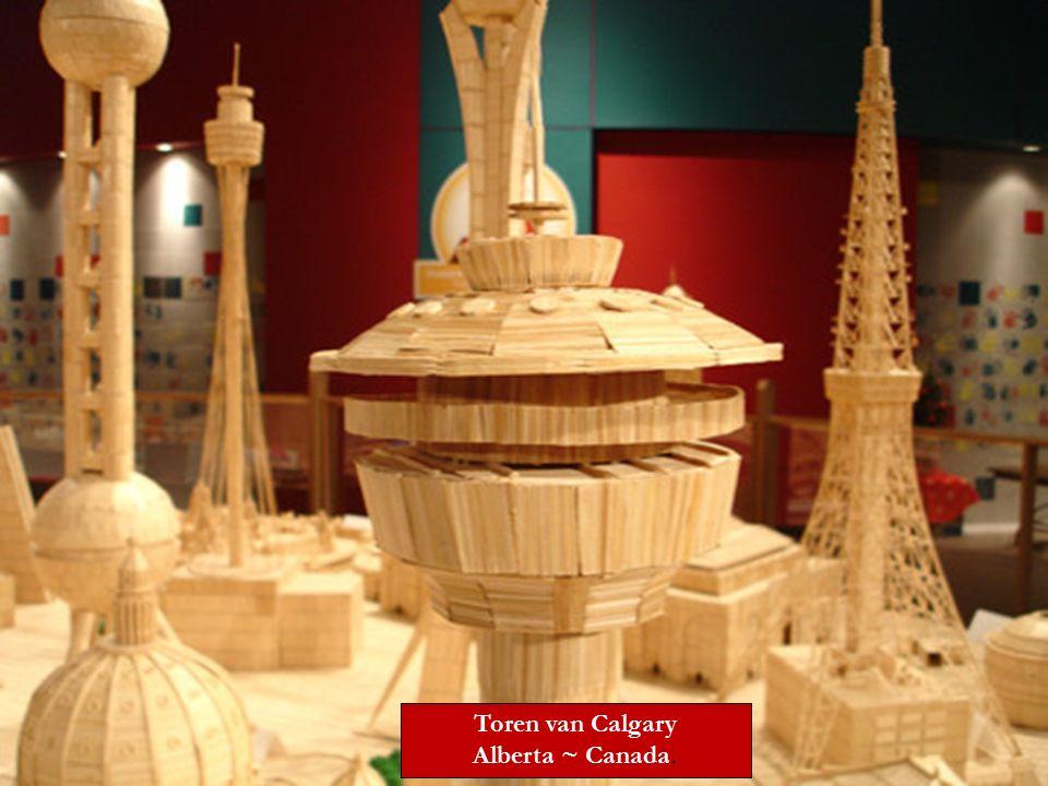 Toren van Calgary Alberta ~ Canada.