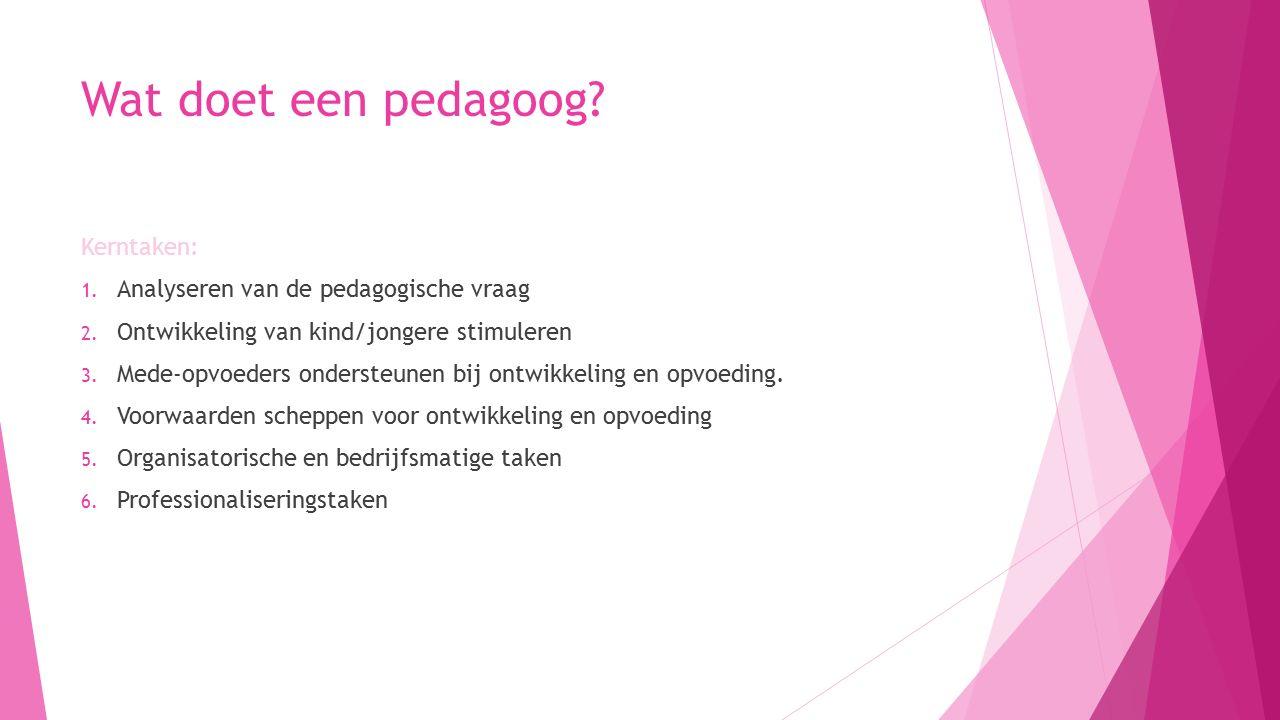 Wat doet een pedagoog Kerntaken: Analyseren van de pedagogische vraag