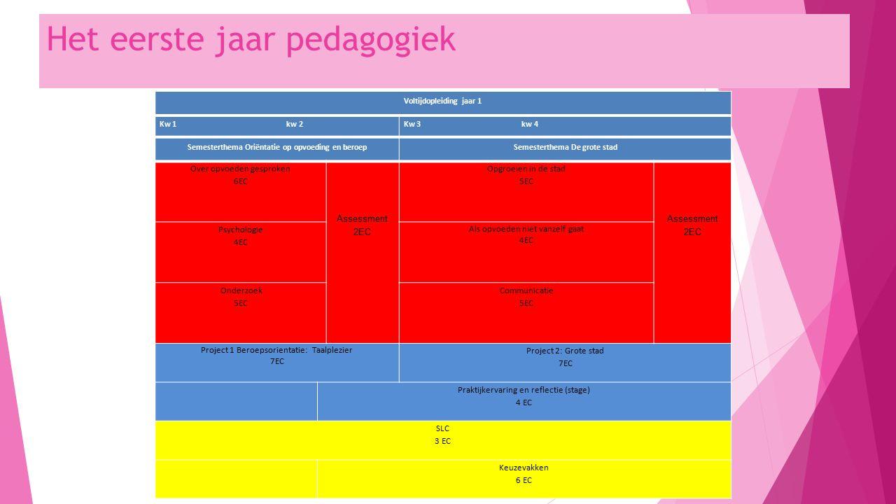 Het eerste jaar pedagogiek