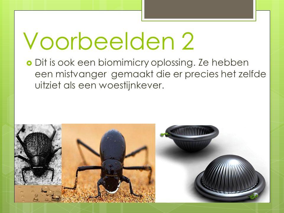 Voorbeelden 2 Dit is ook een biomimicry oplossing.