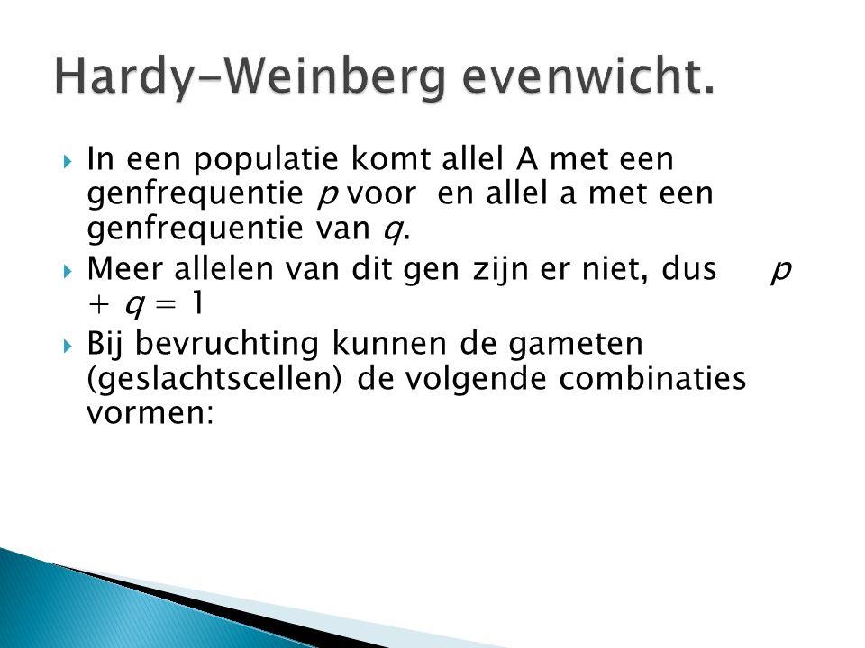 Hardy-Weinberg evenwicht.