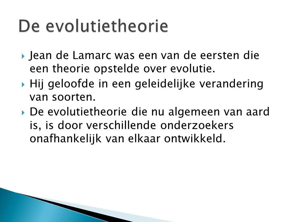 De evolutietheorie Jean de Lamarc was een van de eersten die een theorie opstelde over evolutie.