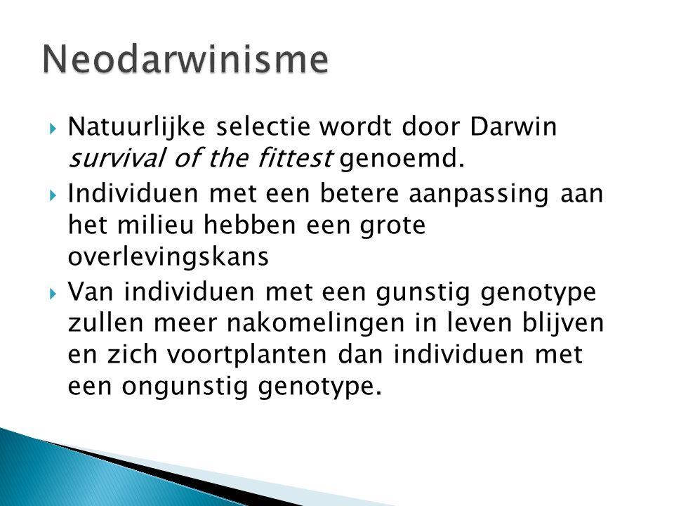 Neodarwinisme Natuurlijke selectie wordt door Darwin survival of the fittest genoemd.