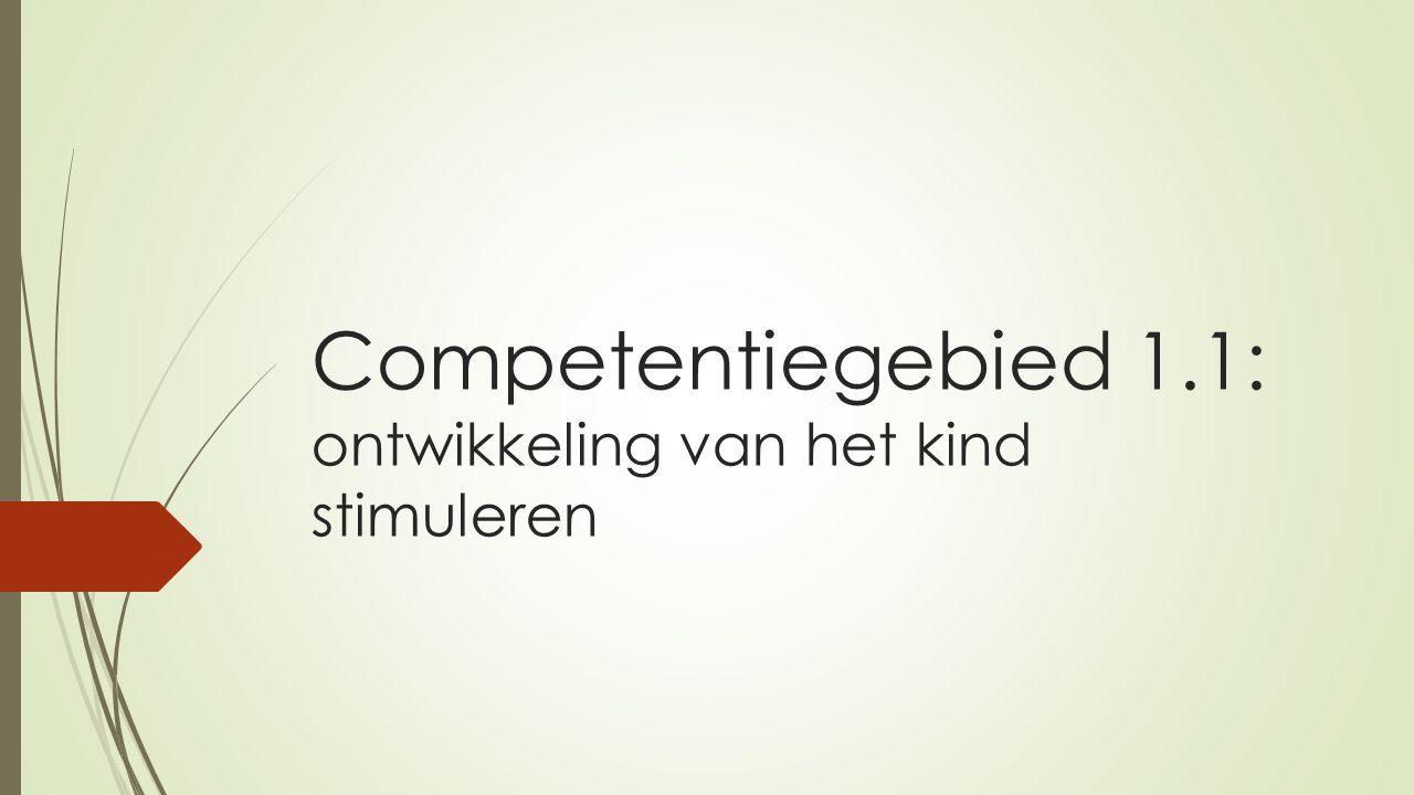 Competentiegebied 1.1: ontwikkeling van het kind stimuleren