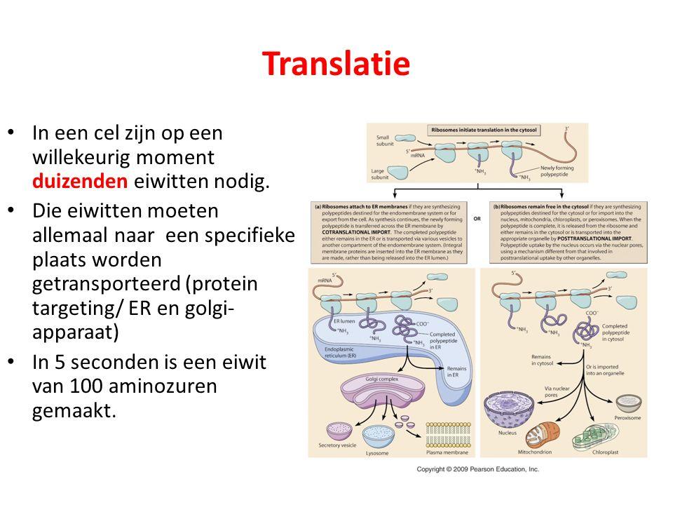 Translatie In een cel zijn op een willekeurig moment duizenden eiwitten nodig.
