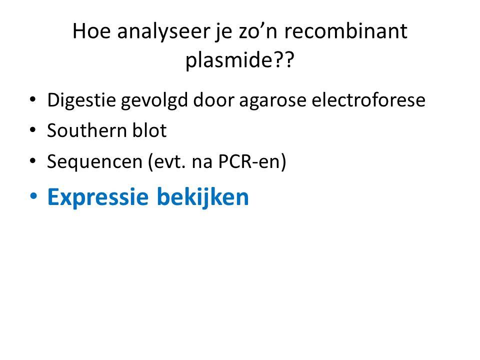 Hoe analyseer je zo'n recombinant plasmide