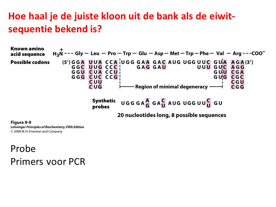 Hoe haal je de juiste kloon uit de bank als de eiwit-sequentie bekend is