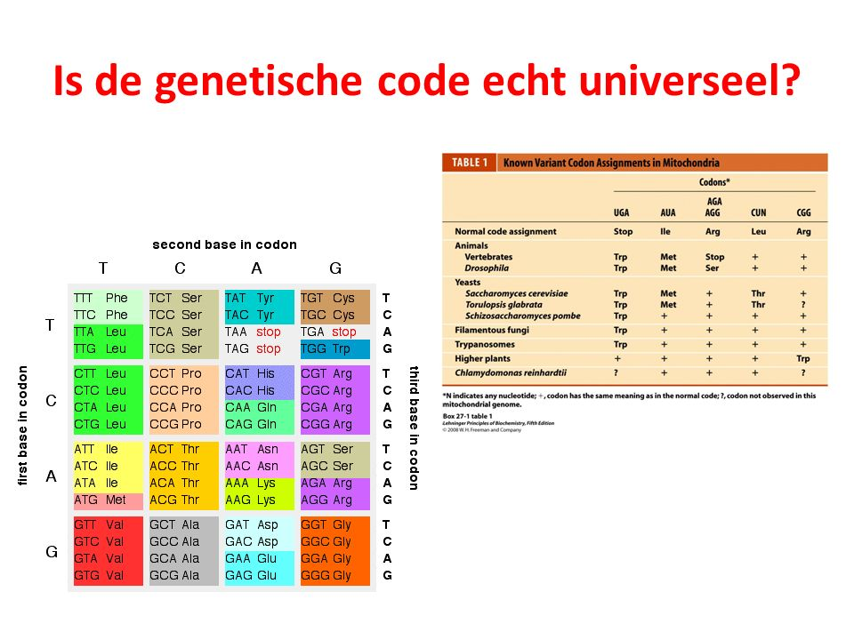 Is de genetische code echt universeel