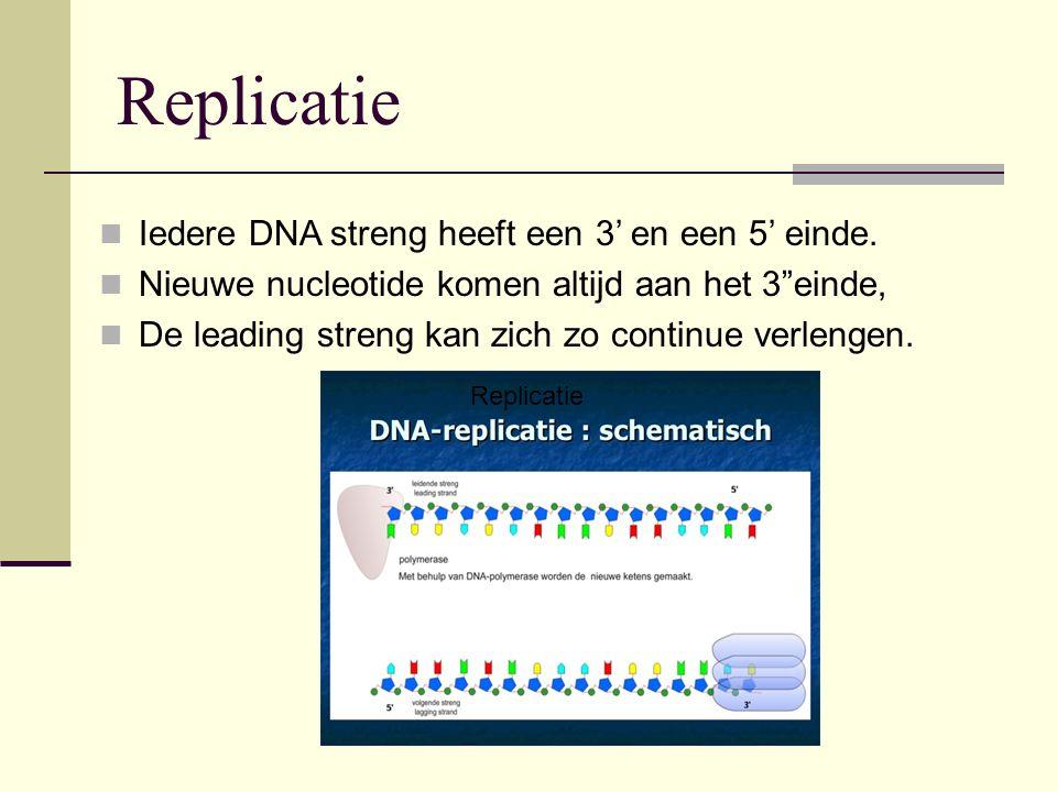 Replicatie Iedere DNA streng heeft een 3' en een 5' einde.