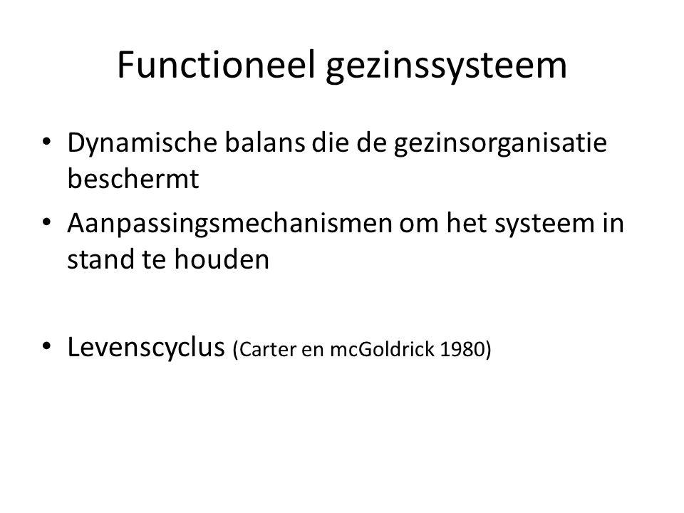 Functioneel gezinssysteem