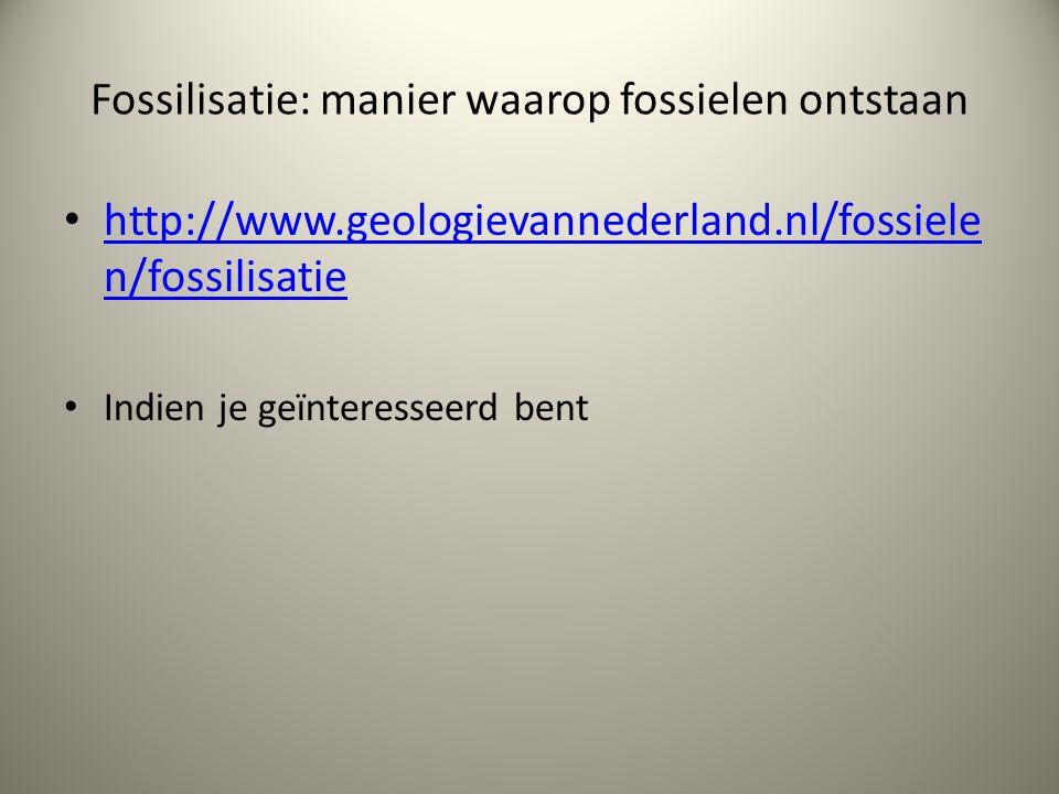 Fossilisatie: manier waarop fossielen ontstaan
