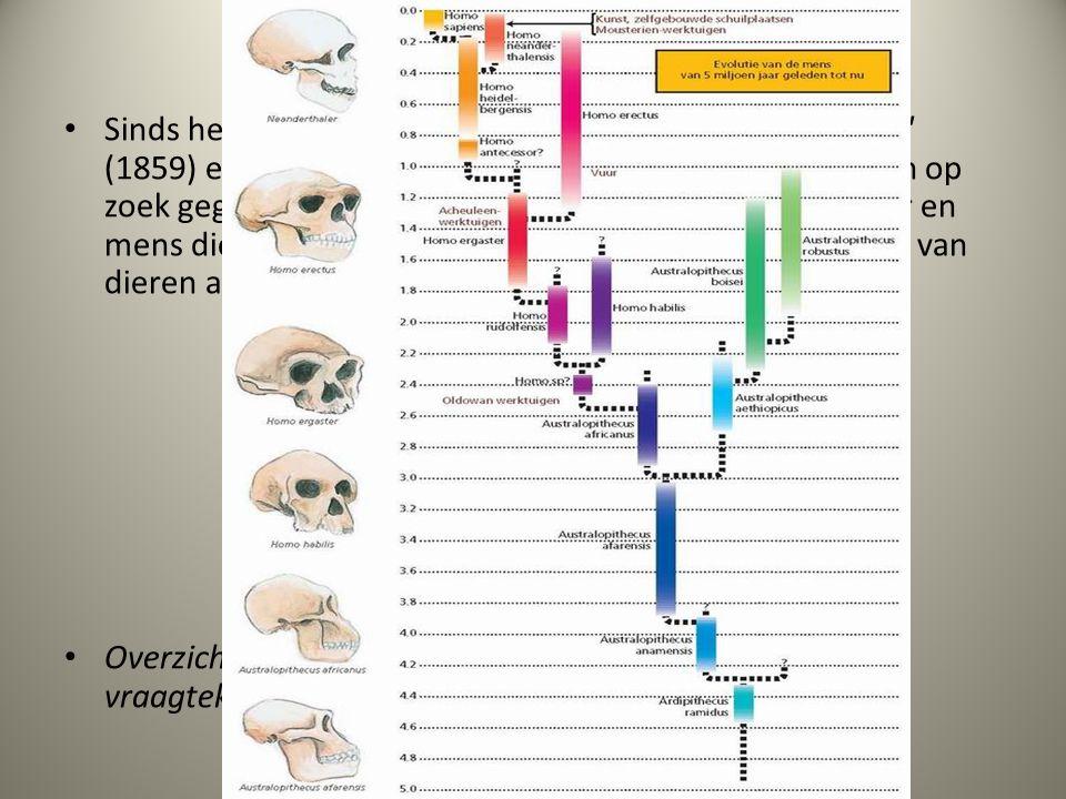 26.7 Evolutie van de mens