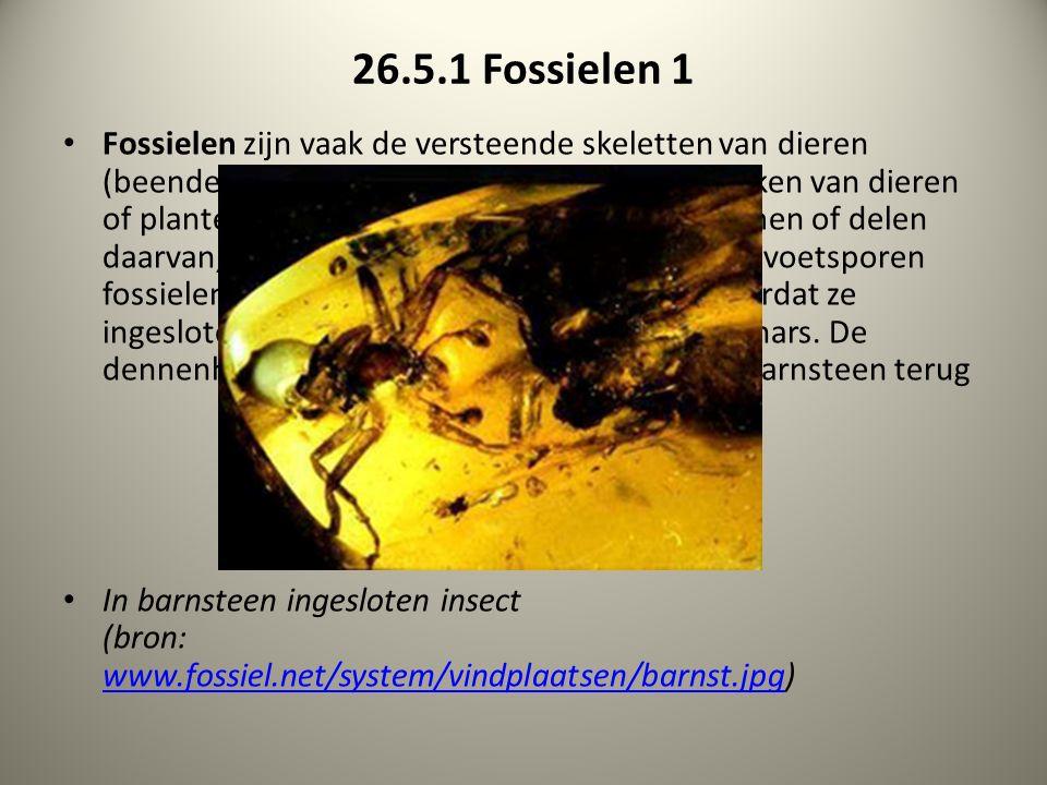 26.5.1 Fossielen 1