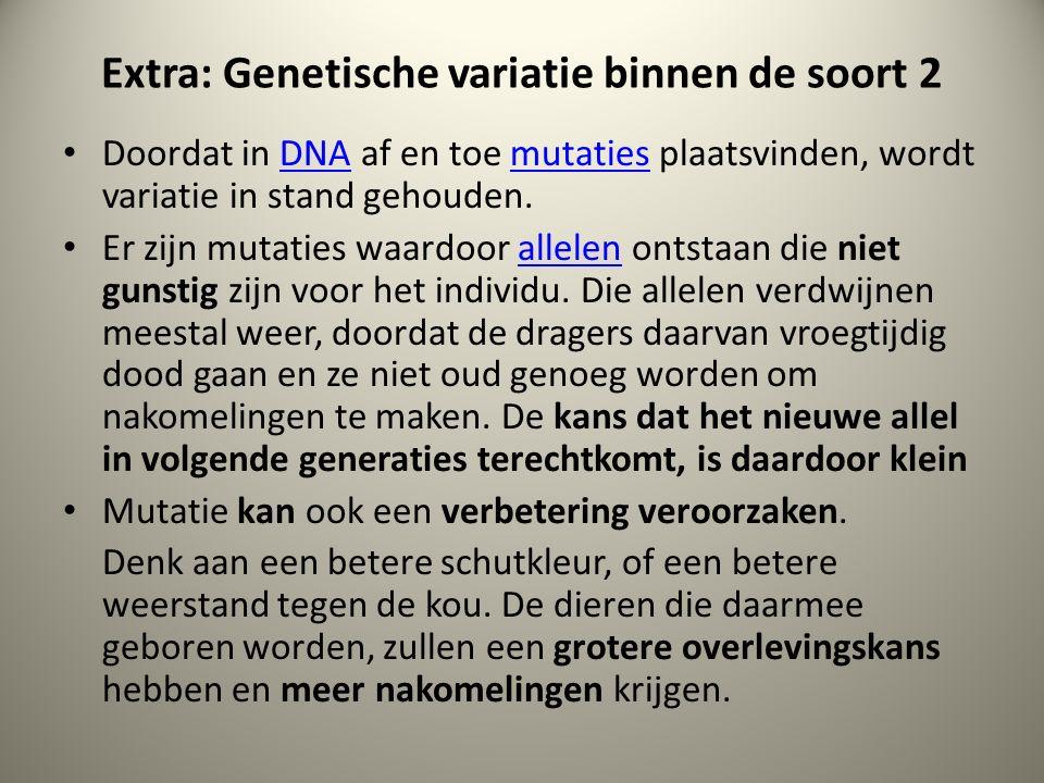 Extra: Genetische variatie binnen de soort 2