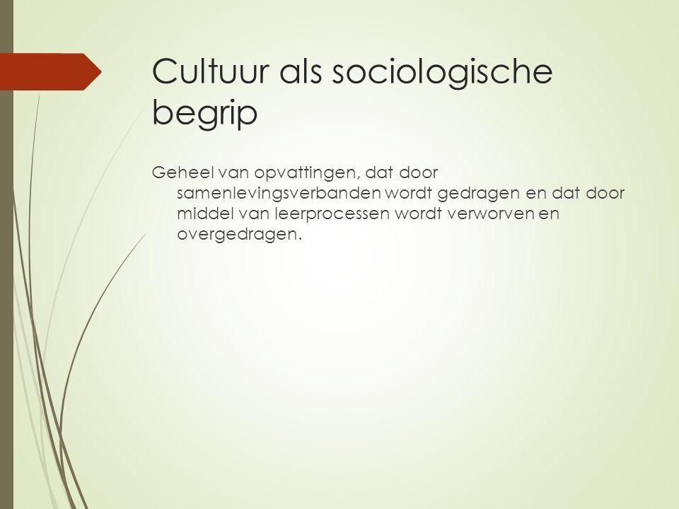 Cultuur als sociologische begrip