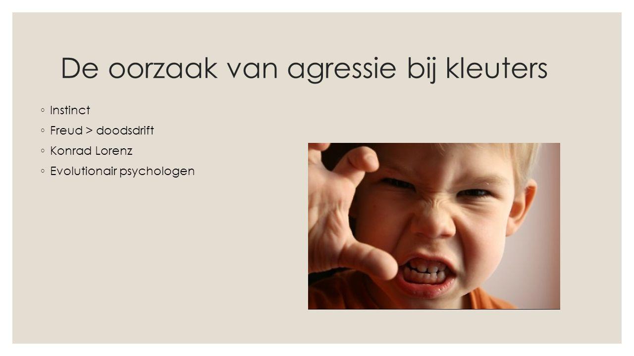 De oorzaak van agressie bij kleuters