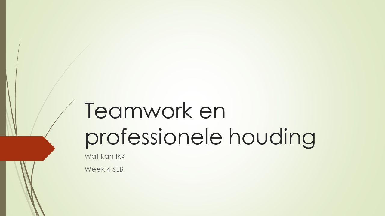Teamwork en professionele houding