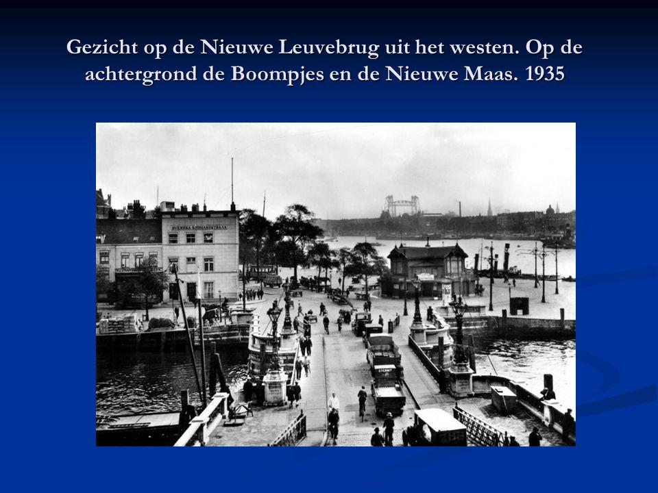 Gezicht op de Nieuwe Leuvebrug uit het westen