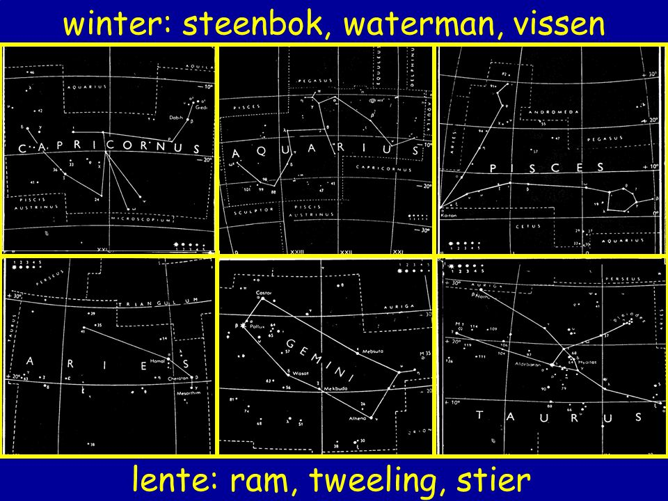 winter: steenbok, waterman, vissen
