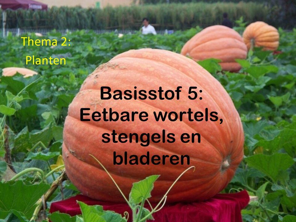 Basisstof 5: Eetbare wortels, stengels en bladeren