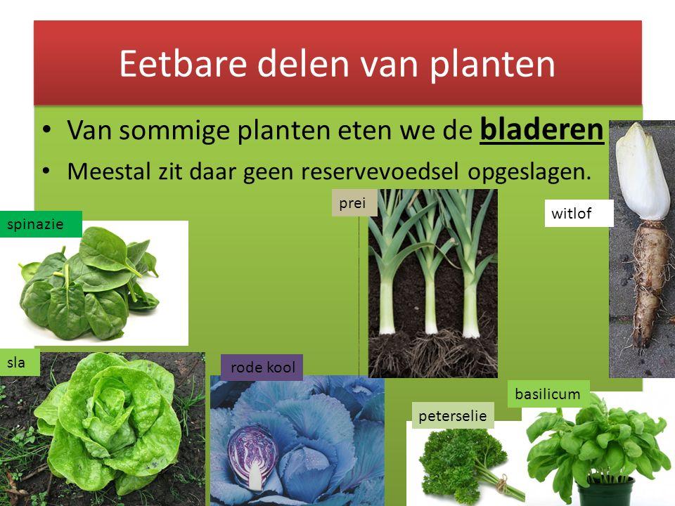 Eetbare delen van planten