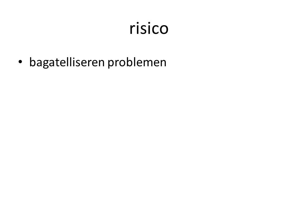 risico bagatelliseren problemen