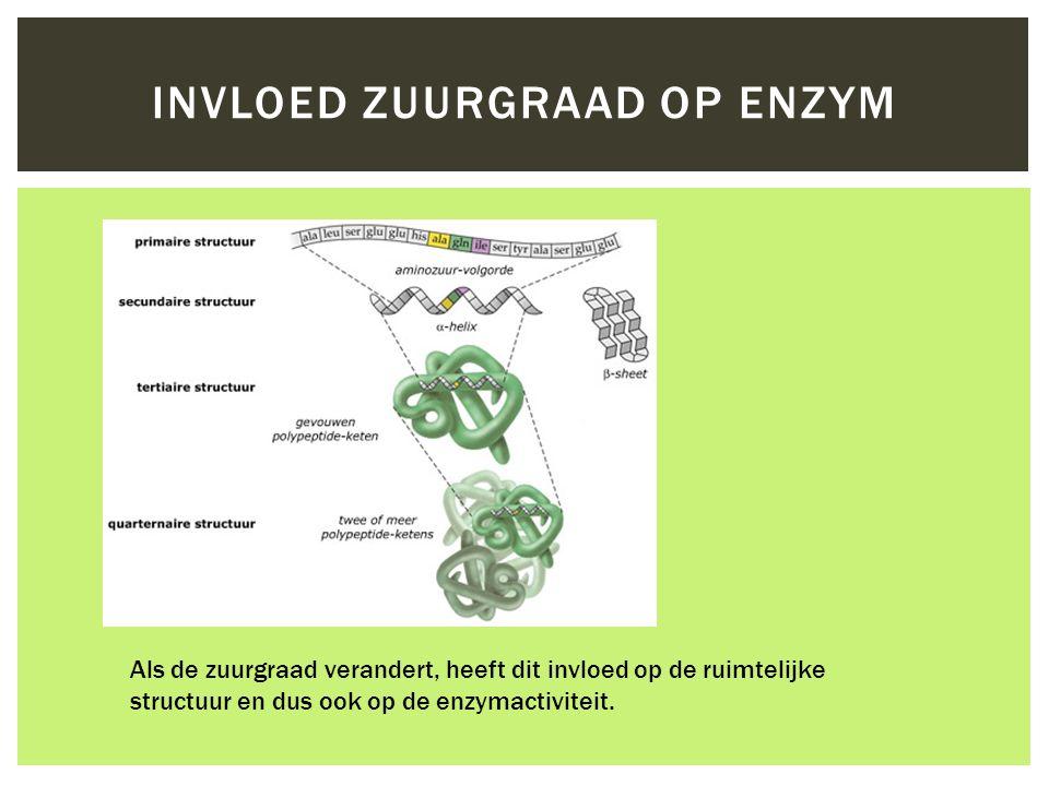 Invloed zuurgraad op enzym