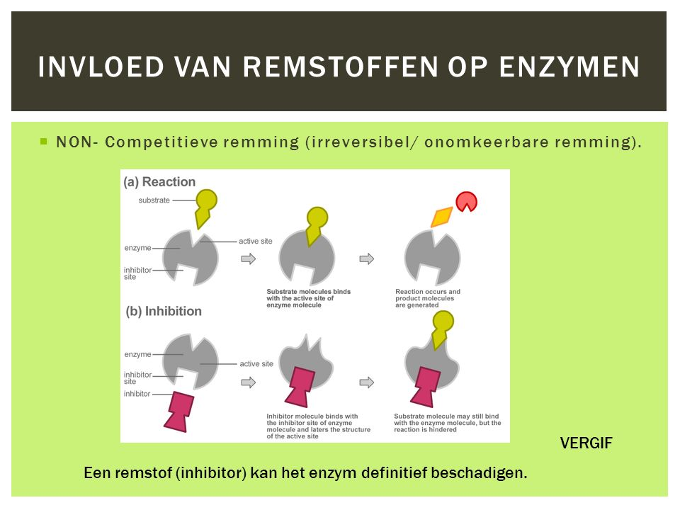 Invloed van remstoffen op enzymen