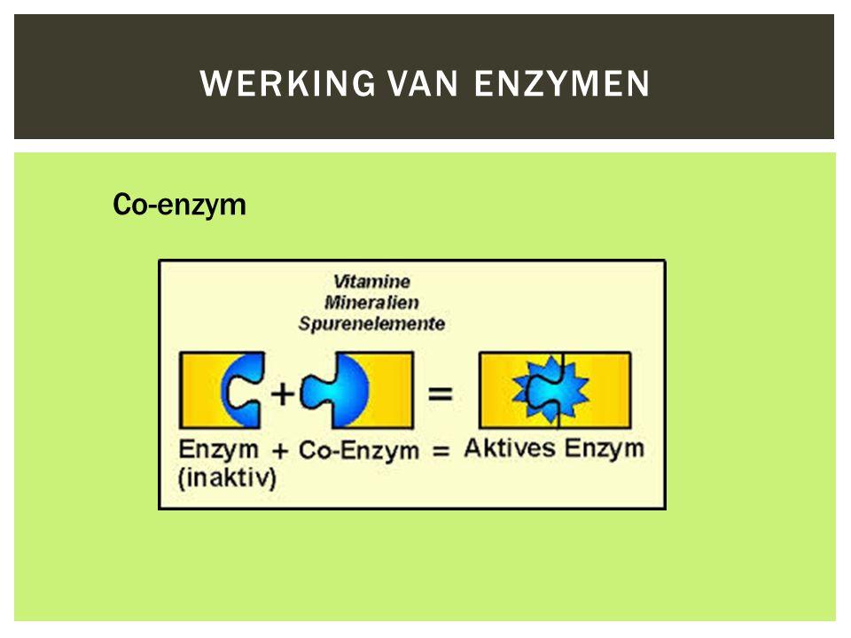 Werking van Enzymen Co-enzym