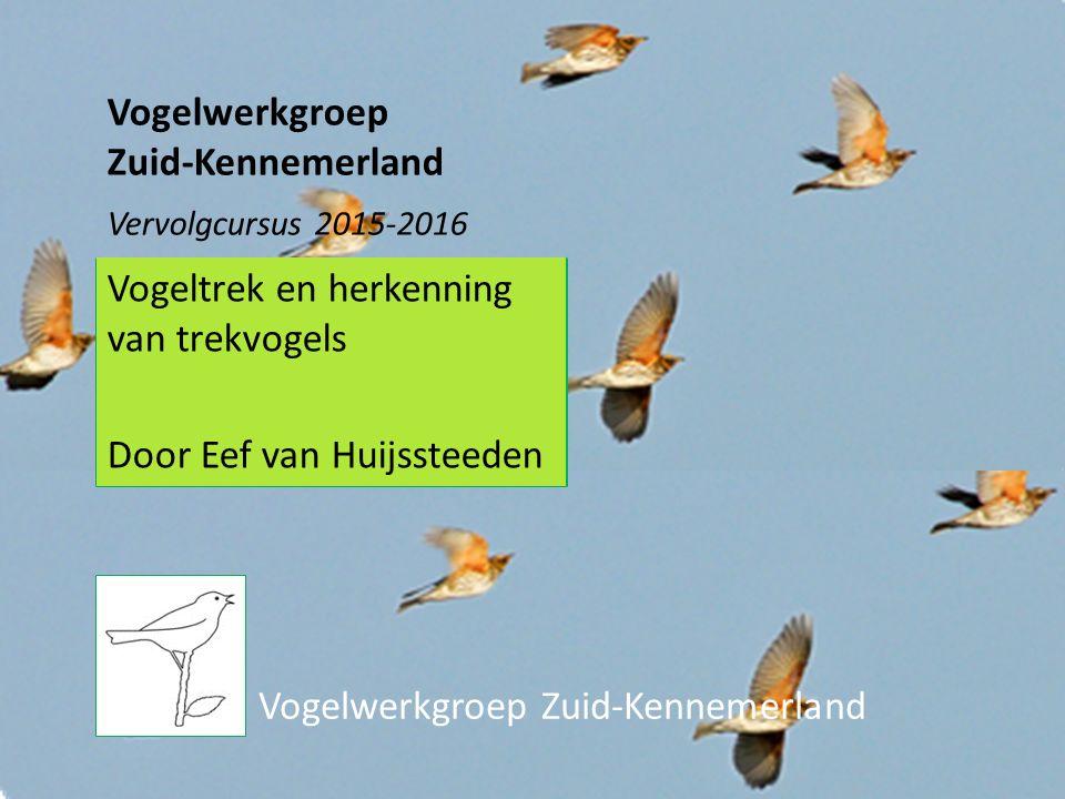 Vogeltrek en herkenning van trekvogels