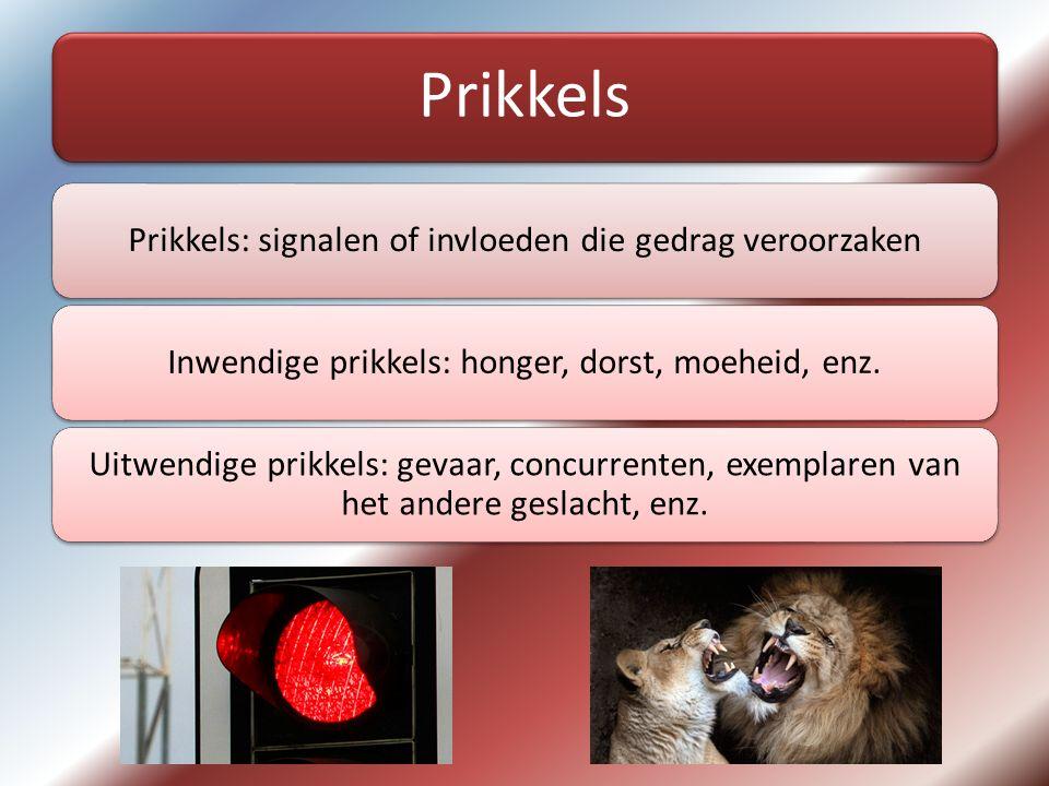Prikkels Prikkels: signalen of invloeden die gedrag veroorzaken